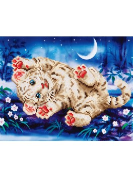 Baby tiger Diamond Dotz DD5.005-20